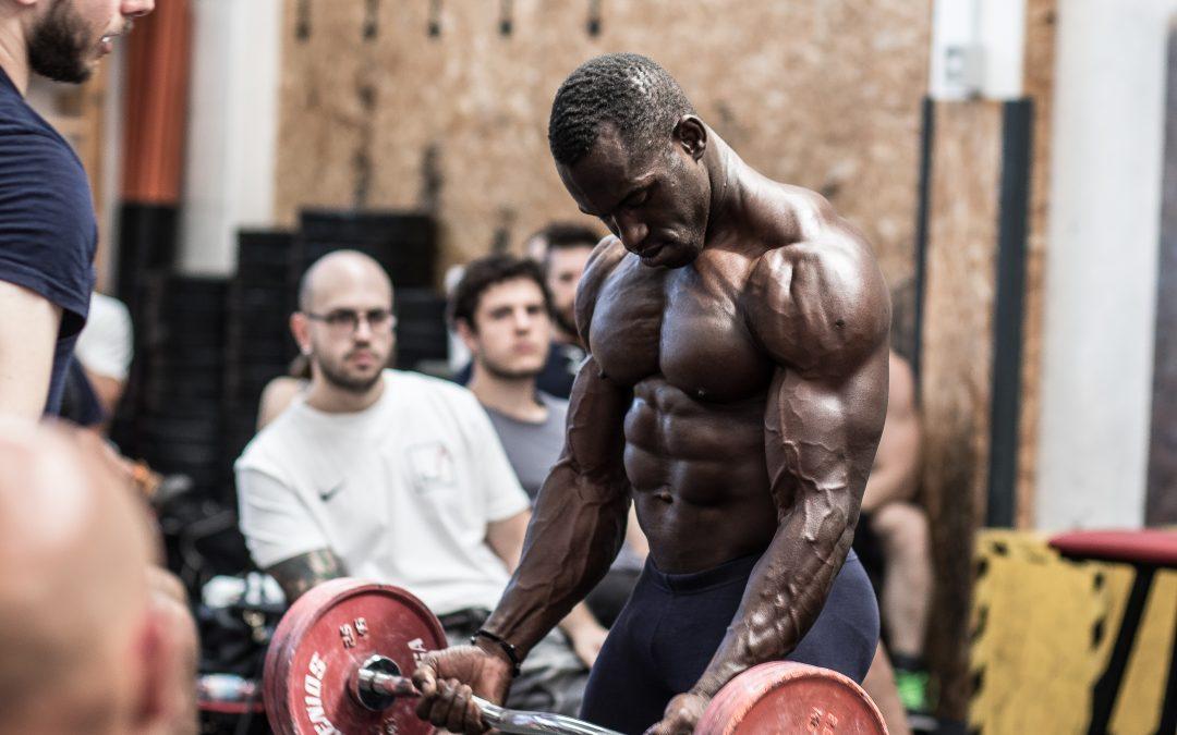 La grande leggenda delle fibre muscolari