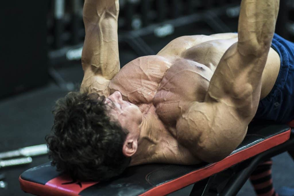 panca piana manubri con muscoli coinvolti