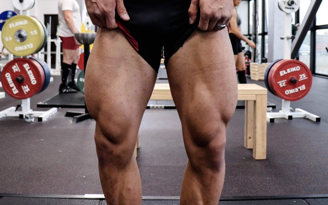 Muscoli delle gambe
