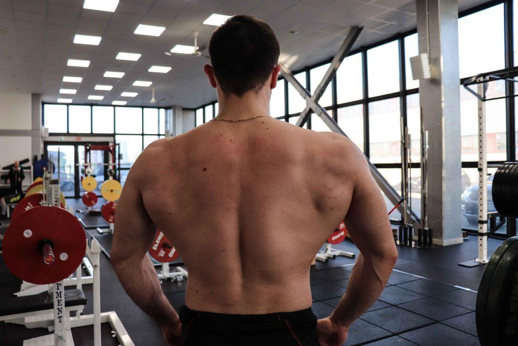 panca piana - muscoli secondari