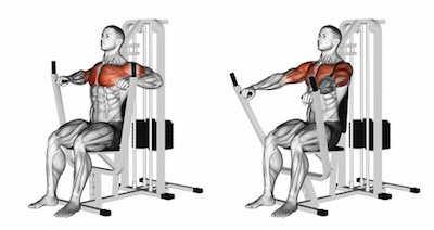 esercizi pettorali: chest press